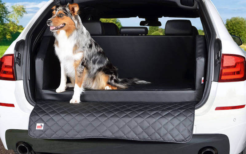 Hundebett Auto Kofferraum Empfehlungen