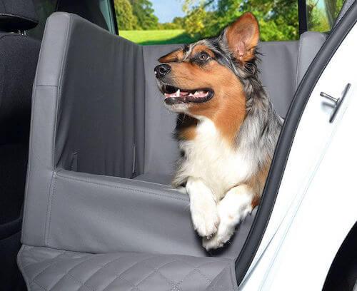 Hundebett Auto Rücksitz Test