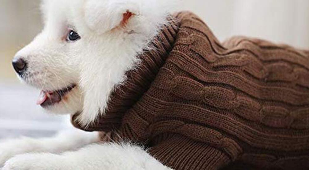 Eastlion adidog Hunde Warm Hoodies Mantel Kleidung Pullover Haustier Welpen T Shirt