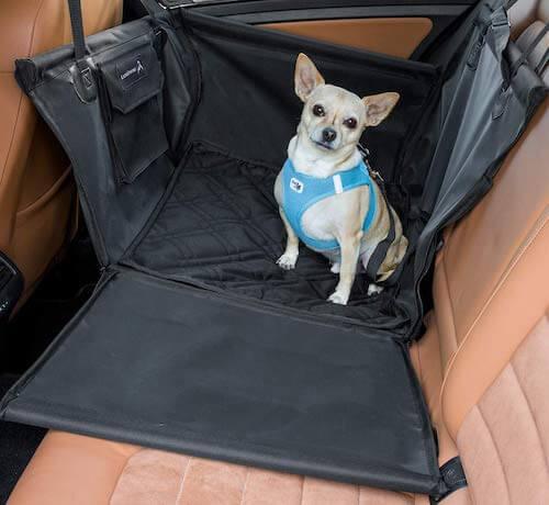LIONSTRONG Hunde Autositz Rücksitz