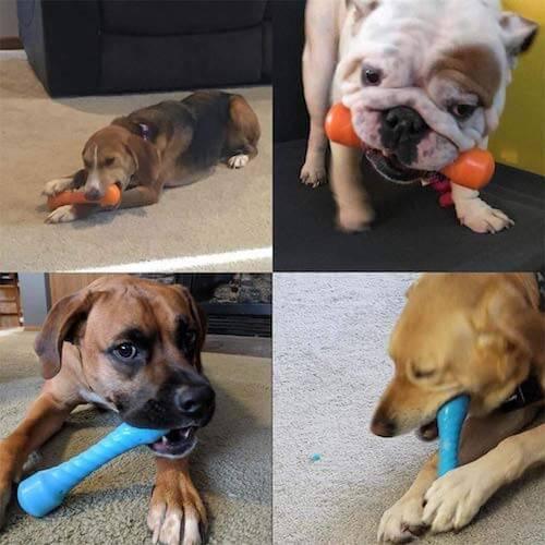 SUOLEITE Hundespielzeug für Aggressive Kauer